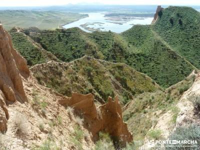 Carcavas de Castrejón (Viernes Semana Santa) senderismo peñalara rutas para caminar
